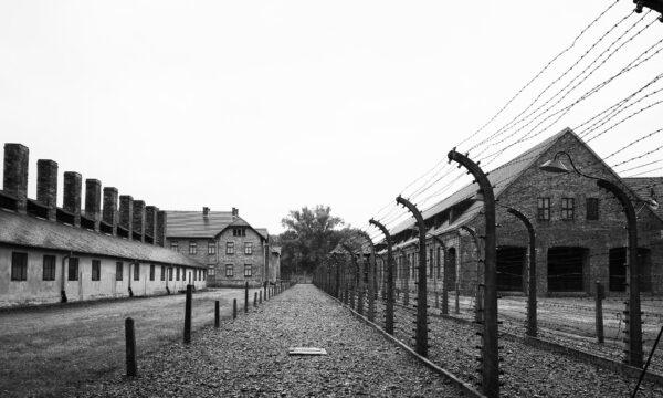 Storia e memoria delle deportazioni nazifasciste (Mooc)